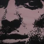 Fischer (2007 - acryl/doek - 20/20 cm.)